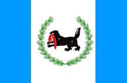 Иркутская область. Флаг