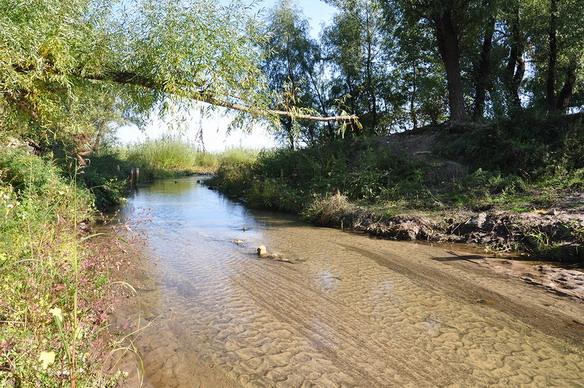Река Сухая Мечетка. Волгоград. Фото